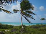 paesaggio tipico messicano dello Yucatan Massico - 196772557
