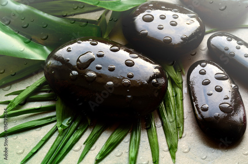 Papiers peints Spa Grey spa background, palm leaves and black wet stones, top view