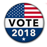 USA Vote 2018 Button with Clipping Path - 196819938