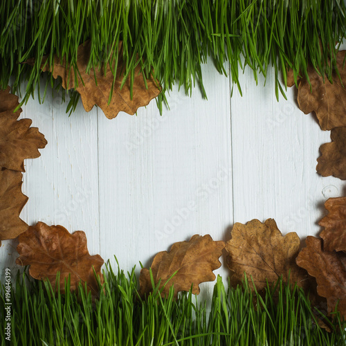 Wooden copyspace, yellow leaves on green grass