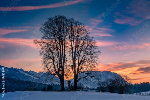 Fotobehang Nachtblauw Winterlandschaft bei Reit im Winkl