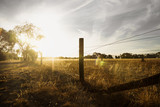 Sunset at a farm in the bush with long fence and flare, Grampians, Victoria, Australia - 196863399