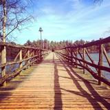 Brücke im Center Parcs de Vossemeeren
