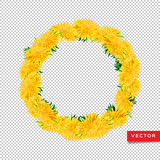 Wreath dandelions isolated transparent background, Floral icon realistic yellow dandelions. All objects are editable, vector illustration