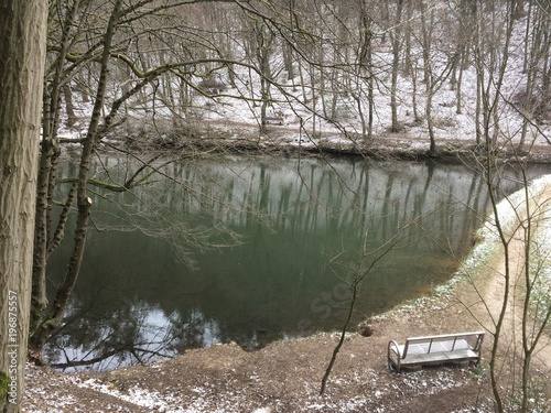 Winter am Waldsee