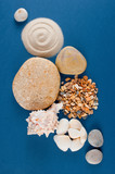 Abstract composition of various sea shells, sand and stones - 196884579