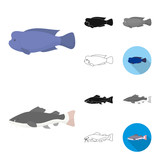 Different types of fish cartoon,black,flat,monochrome,outline icons in set collection for design. Marine and aquarium fish vector symbol stock web illustration.
