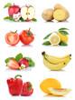 Obst und Gemüse Früchte viele Apfel Tomaten Zitrone Paprika Farben Freisteller freigestellt isoliert