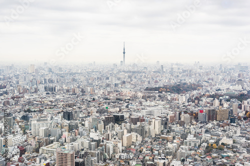 Tuinposter Tokio Asia business concept for real estate and corporate construction - panoramic modern city skyline aerial view of Ikebukuro with grey sky in tokyo, Japan