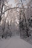 Evening on winter road - 196973372