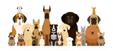 Group of Dog Breeds Illustration, Various Size, Front View, Pet - 196975330