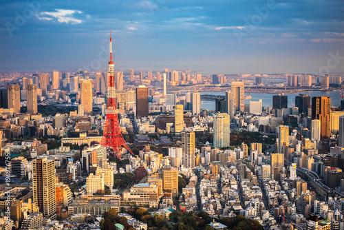Tokyo aerial panoramic view - 196976755