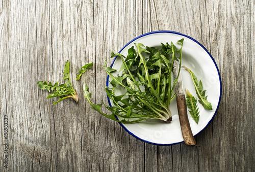 Dandelion salad - 196983339