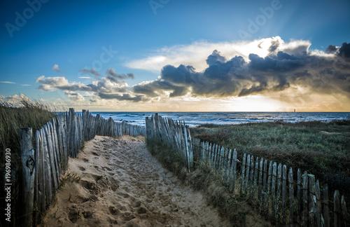 Tuinposter Weg in bos Chemin clôturé vers la plage de la Paracou (Les Sables d'Olonne, France)