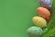 Easter eggs decoration on green background