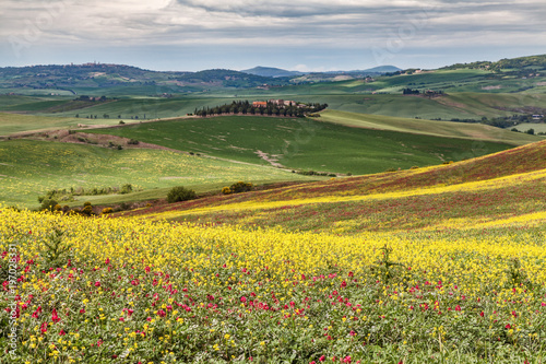 Fotobehang Meloen Val d'Orcia in primavera Toscana Italia