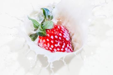 Strawberry falling in a bowl of milk with milk splashing