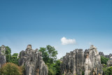 yunnan stone forest scenic