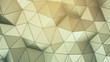 Triangulated polygonal surface 3D render