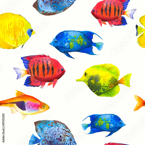 Fotobehang Koraalriffen Seamless pattern with tropical fish. Watercolor illustration with hand drawn aquarium exotic fish on white background.