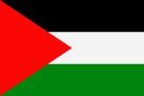 Palestine Flag Vector Flat Icon - 197053981
