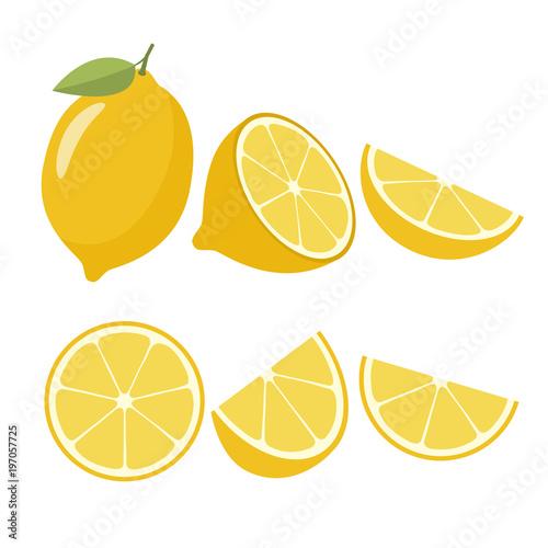 Lemons on a white background. Vector illustration - 197057725
