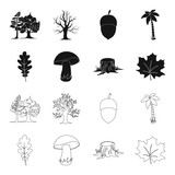 Oak leaf, mushroom, stump, maple leaf.Forest set collection icons in black,outline style vector symbol stock illustration web.