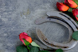 Two old horse shoes paired with silk red roses on a scratched up steel background make a nice image with contrasting elements of silk and steel. Good for Kentucky Derby or any other equestrian theme.