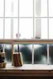 Books on window