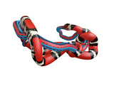 3D Illustration of a Scarlet King Snake Swallowing a Blue Red Snake - 197097704