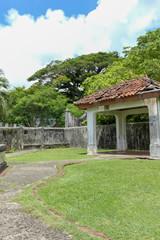 Old dilapidated garden