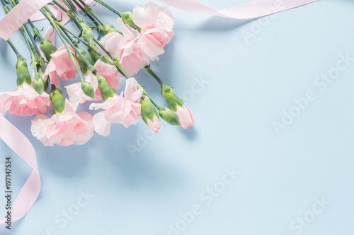 Foto Murales 水色を背景にしたピンクのカーネーション
