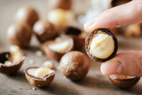 Closeup view of fingers holding Macadamia nut. Healthy food - 197148932