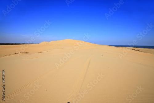 Foto op Aluminium Donkerblauw The desert by the sea