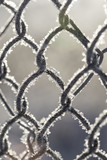 Frozen fence made of metal mesh covered with frost crystals, an early sunny cold morning, on a blurred background. Close-up. - 197187362