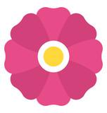 A beautiful generic mauve flower - 197193383