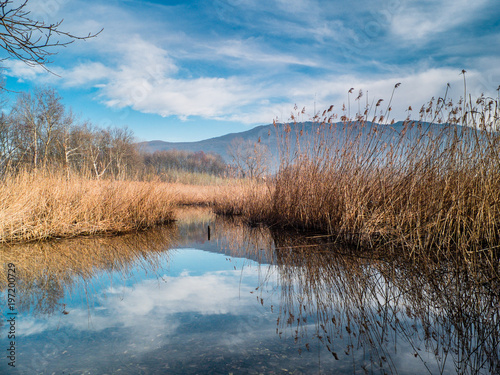 Fotobehang Herfst landscape of Lake of Varese ,Lombardy,Italy