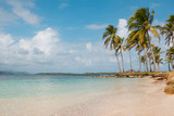 beach, palm trees and turquoise water  - 197229594