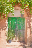 ancient wooden green door of house built with bricks and adobe, with plants, in old town of Ayllon village, Segovia, Spain, Europe  - 197265739