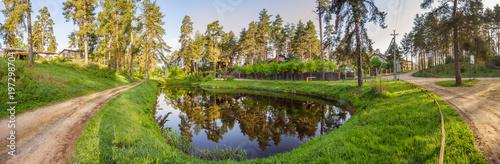 Pond, road, pine forest in Svetlitsy village - 197298704