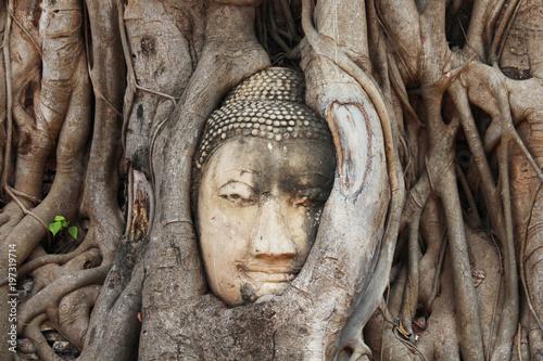 Fotobehang Boeddha Beautiful Ayutthaya temples in Thailand.