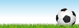 Soccer banner. Football stadium grass and blue sky background. Vector header with soccer ball on the right side. - 197327512