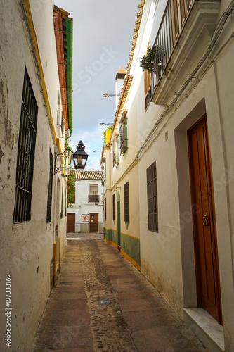 Foto op Plexiglas Smal steegje calle angosta de color blanco y puertas de madera