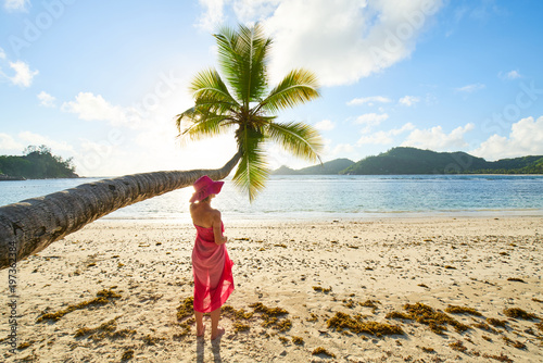 female tourist with pink sarong under coconut palm tree, seychelles