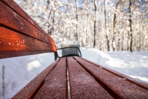 Foto op Plexiglas Kiev Winter morning in the park