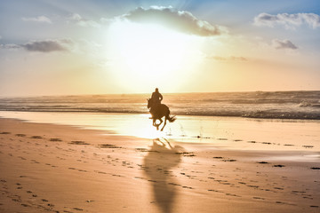 Horse Ride in front of the Sea in full Sunset, Moroccan coast, Casablanca, Morocco © Redouane