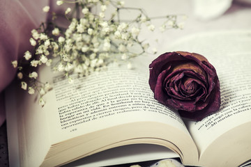 Dry rose on an open book that is on top of the bed