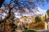 Vue sur le village de Lurs au printemps, Provence, France. Amandier en fleurs au premier plan.