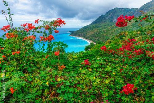 Fotobehang Groene Scenic natural wild landscape with rocky mountains overgrown dense green jungle tree, palm and clear azure water of sea ocean