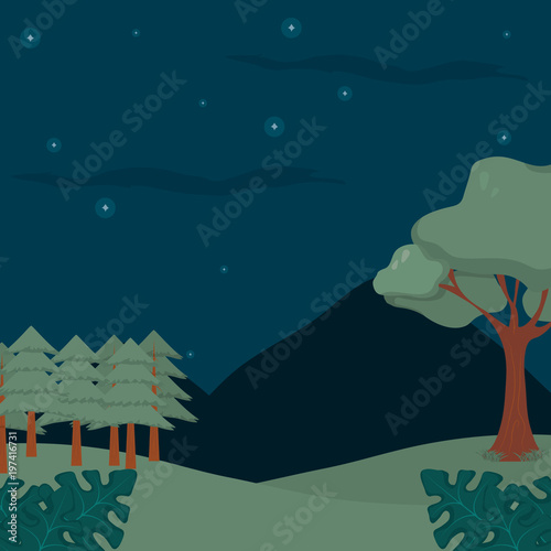Forest landscape cartoon at night